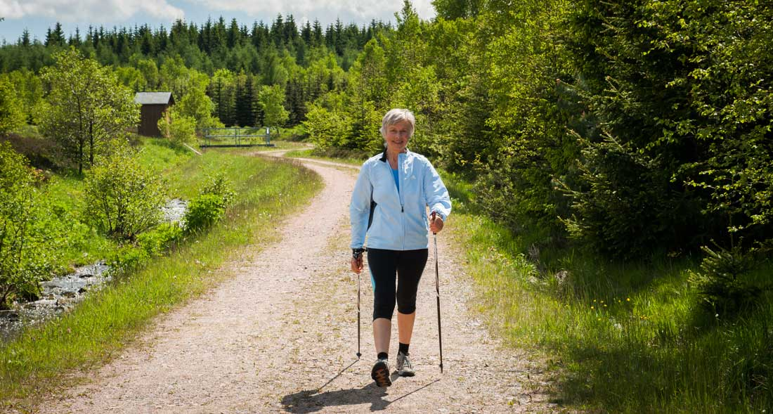 11198_Nordic-Walking_Raupennest